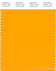 PANTONE SMART 14-1064X Color Swatch Card, Saffron