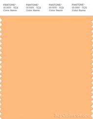 PANTONE SMART 14-1128X Color Swatch Card, Buff Orange