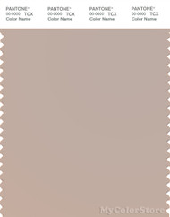 PANTONE SMART 14-1305X Color Swatch Card, Mushroom