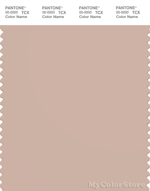 PANTONE SMART 14-1307X Color Swatch Card, Rose Dust