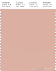 PANTONE SMART 14-1313X Color Swatch Card, Rose Cloud