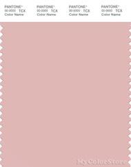 PANTONE SMART 14-1907X Color Swatch Card, Peach Skin