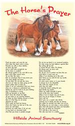 Horse's Prayer Tea Towel