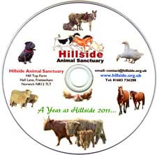 A Year at Hillside 2011