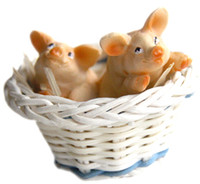 Cute Pigs in Basket