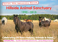 Hillside Latest Newsletter