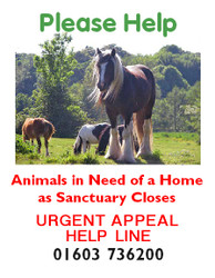 Urgent Sanctuary Rescue Appeal