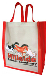 Large Hillside Bag