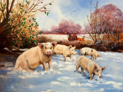 'Pigs in the Snow' Original Oil Painting