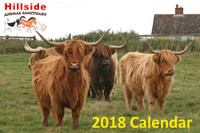 Hillside Sanctuary Scenes 2018 Mini Calendar