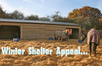 Winter Shelter Appeal 2017...