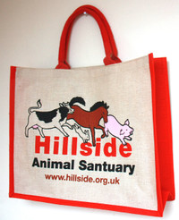 Hillside 'Spot the Mistake' Shopping Bag