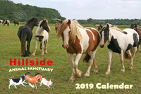 Hillside Sanctuary Scenes 2019 Mini Calendar