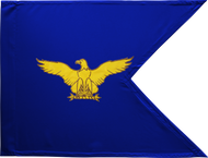 US Air Force Guidon Unframed 05x09