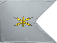 Cyber Corps Guidon Framed 16x20
