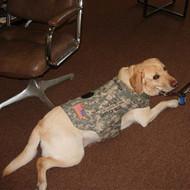 Service Dog Jacket - ACU MATERIAL