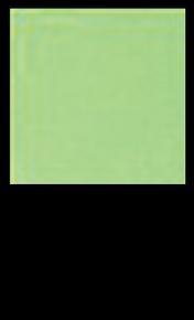 Mint Julip G355