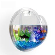 https://d3d71ba2asa5oz.cloudfront.net/33000689/images/fishbubble3.jpg