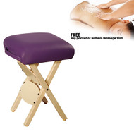 https://d3d71ba2asa5oz.cloudfront.net/33000689/images/woodenhandystool-purple.jpg