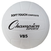 Synthetic Leather Indoor/Outdoor Volleyball