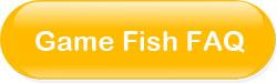 koi-fish-faq.jpg