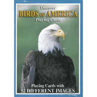 Birds of America Playing Cards