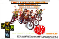 1967 'Wild Rebels' Movie Poster