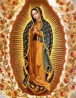 Our Lady of Guadalupe devoted altar custom petition Ritual