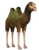 Hansa Camel, Ex Lg 5'3'' (1813)