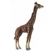 Hansa Giraffe, Med  34''