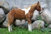 Hansa Paint Pony, Life Size 60''