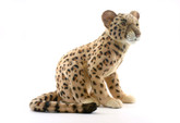 Hansa Leopard Cub, 17''