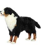 "Hansa Bernese Mountain Dog Standing, 49""L x 34.5H (6849)"