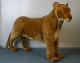 Hansa Lioness, Standing 48.5''