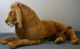 Hansa Lion, Laying Life Size