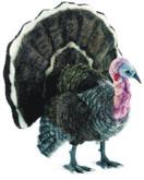 "Hansa Turkey, Life Size 39""L x 46''H"