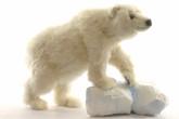 Hansa Polar Bear Cub, Med On All Four Feet 19''L (5259)