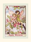 R John Wright Dolls - Apple Blossom Flower Fairies