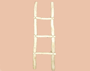 Tarahumara southwestern wooden log ladder. 4'
