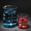 Low Form Beakers, Type I Borosilicate Glass, 10mL, case/48