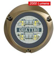 SeaBlaze Quattro LED Underwater Light