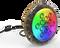 P24 RGB