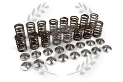 Brian Crower SR20DET Valve Single Spring & Titanium Retainer Kit