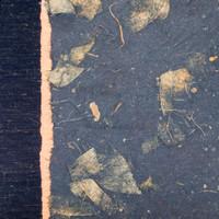 Black Mango Leaf with Copper