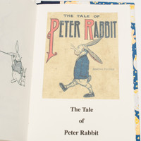 Small Peter Rabbit reprint with bunny and moons