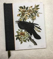 Medium Sketchbook in Black Raven cover