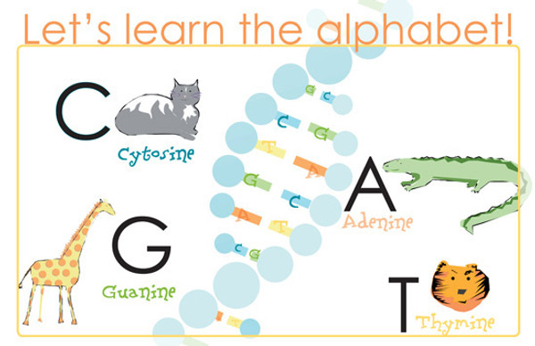 """Let's Learn the ABCs of DNA! -- mini poster 11x17"""""""