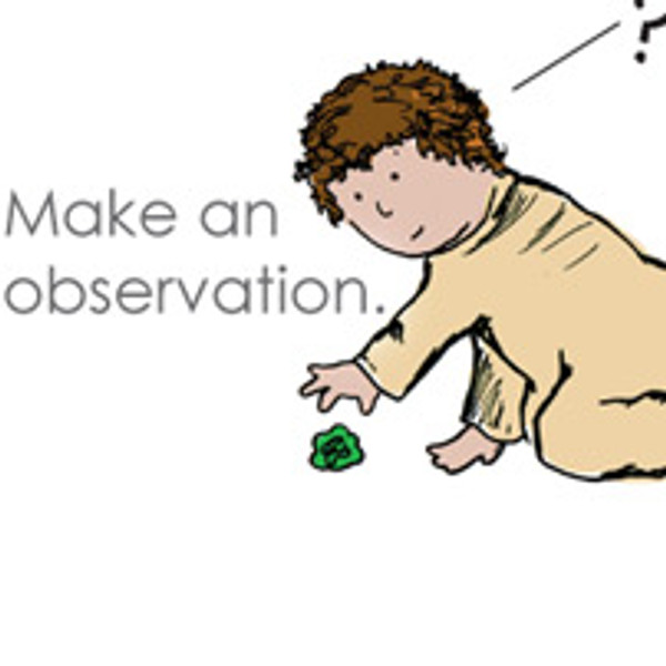 Every baby knows the scientific method -- mini-poster 11x17