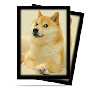 Can doge play too?