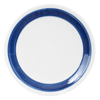 "11"" PLATE WITH BLUE STRIPE"